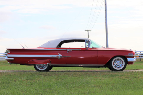 Impala (30).JPG