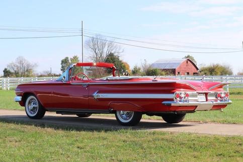 Impala (3).JPG