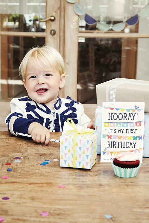 First Birthday Moments