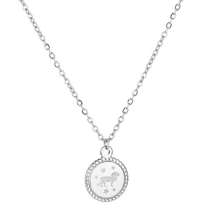 Ketting sterrenbeeld zilver (stainless steel)