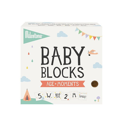 Baby Age + Moments Blocks