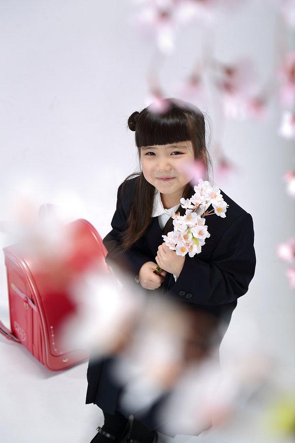 イベントイメージ入学式・小学校・桜と赤いランドセルの写真