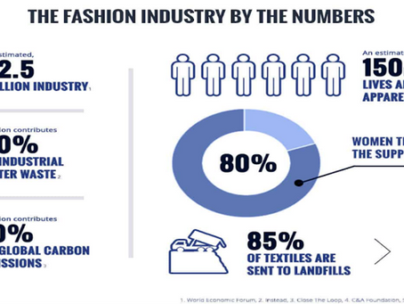 Eco Blog 5: Fast Fashion