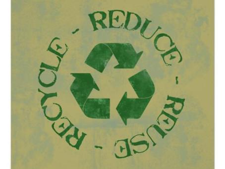 Eco Blog 8: Green Tips