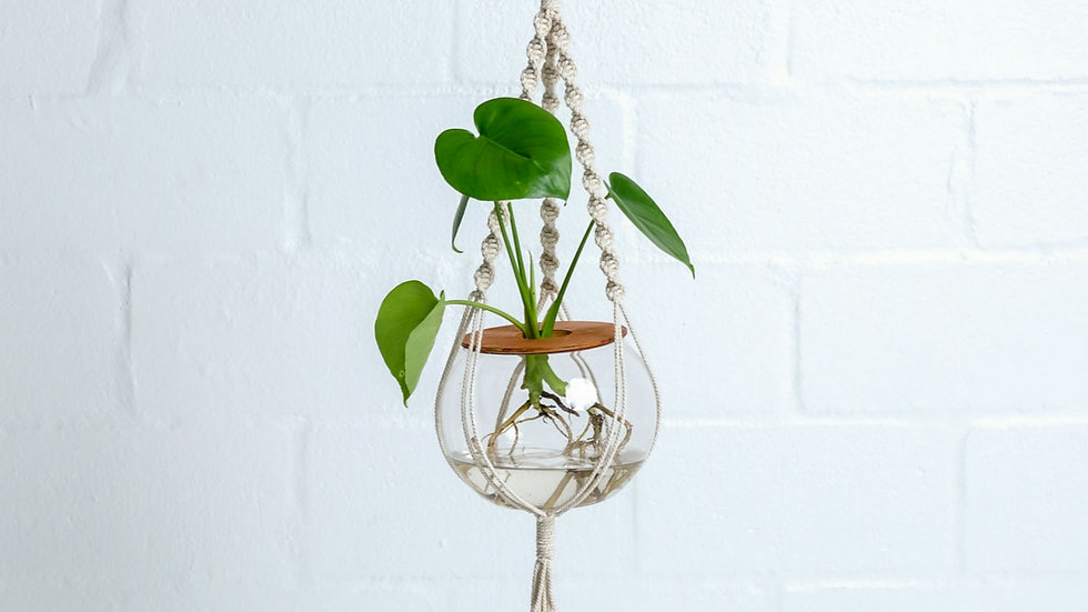 Macrame Hanger with Delicious Monster (15cm)