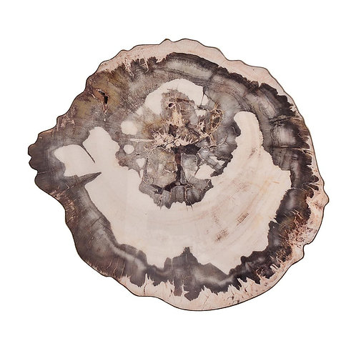 Placemat Petrified Wood (set of 12)