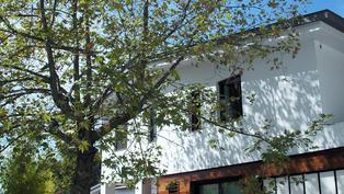 Family House Revision & Pool for Art   Eleni Kostika Architecture