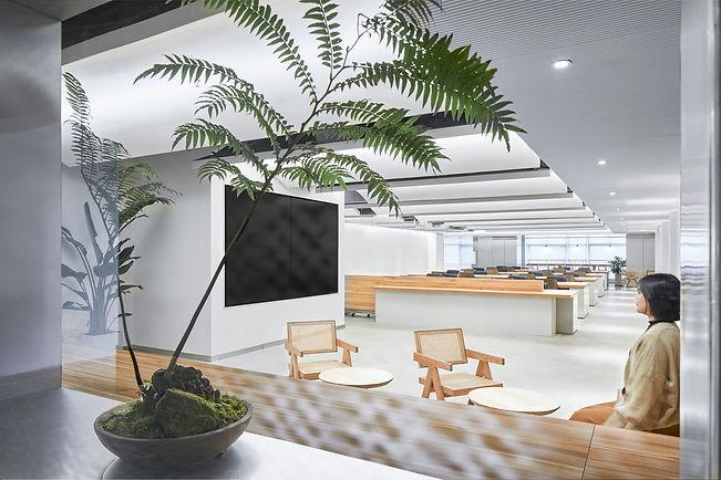 qin_group_chengdu_office_studio_dotcof