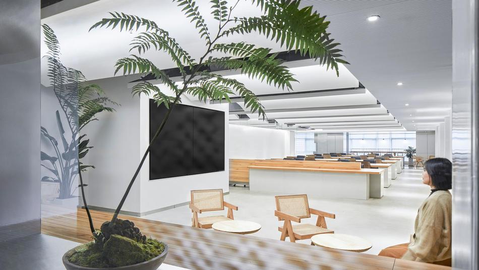 Qin Group Chengdu Office | Studio DOTCOF