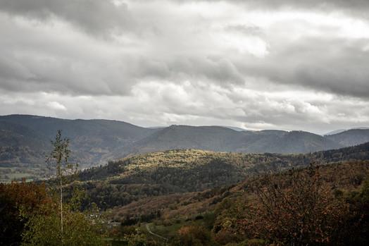 Alsace landscape Photo credit: Florent Michel @11h45