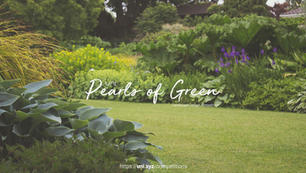 Pearls of Green   Landscape Design Competition