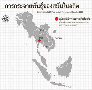map_result.webp