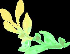 leafA green.png