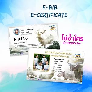 facebook_E-bib,E-cer_result.webp