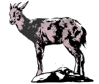 goral.png