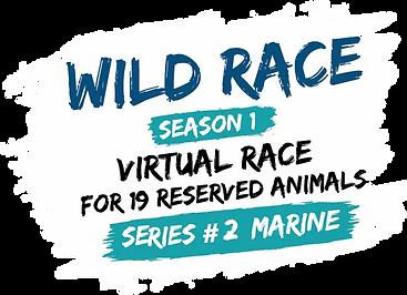 Logo Wild Race searies2.webp