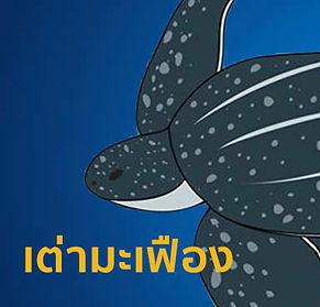 สมัน-01.webp