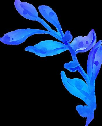 leafA blue 2.png