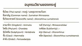 0803 อนุกรม แรดชวา_result.webp