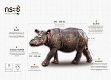 กระซู่  Sumatran Rhinoceros