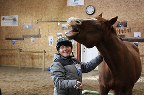 horses helping youth with addictions