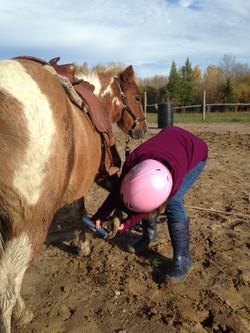horse lessons dryden