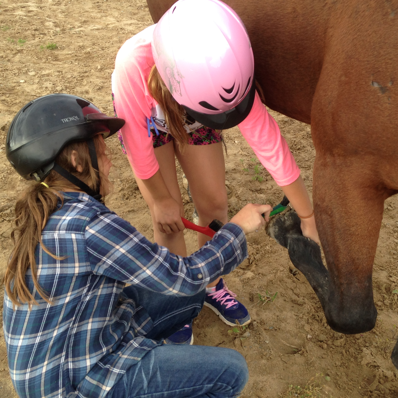 kids horse lessons dryden
