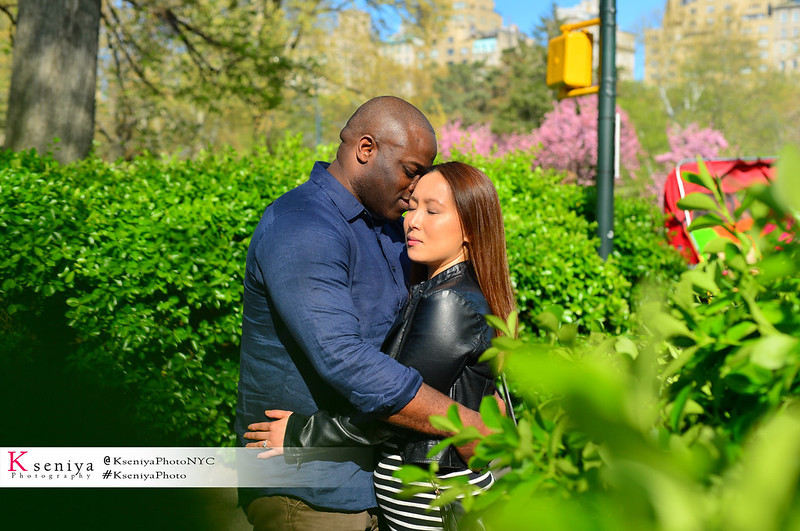 Secret Proposal Photos in Central Park at any season