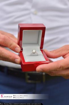 Secret Proposal Photographer