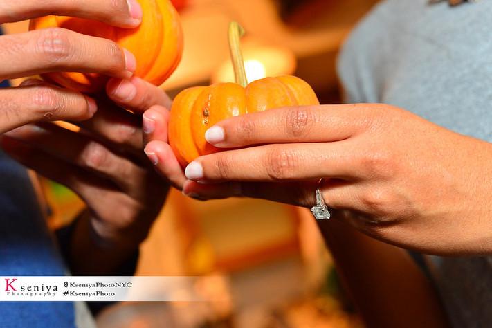 Seasonal Proposal Ideas Photogrspher