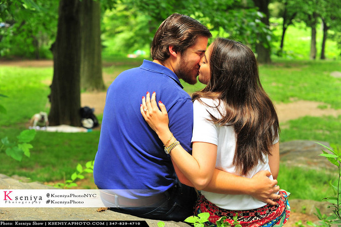 Propose in Central Park