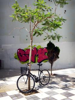 Bicycle WM.jpg
