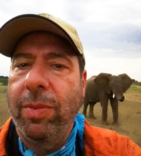Selfie with Elephant WM.jpg