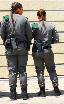 The Border Patrol WM.jpg