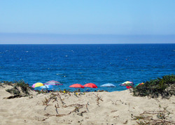 Beach WM.jpg