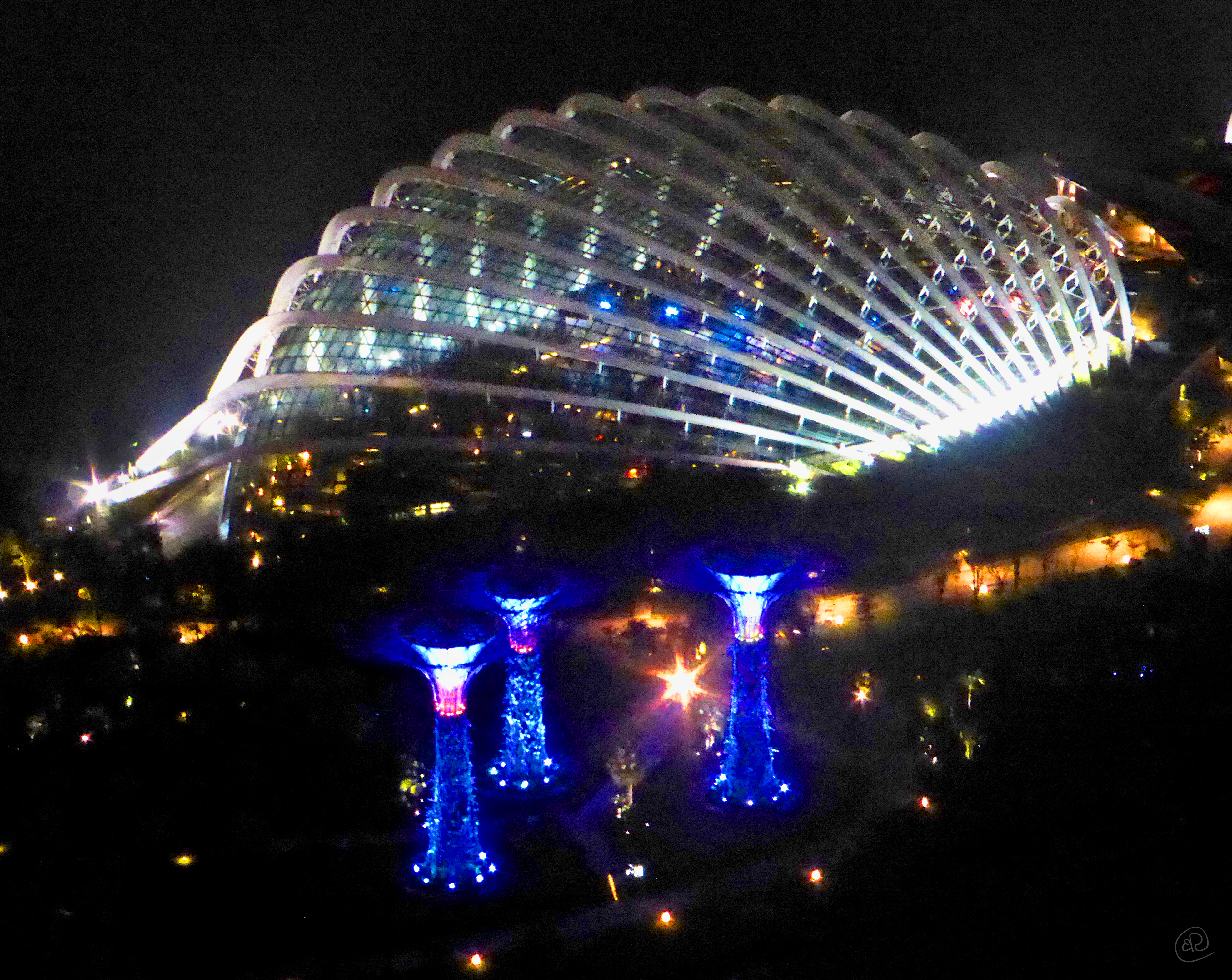 Dome at Night.jpg