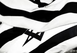 Flag WM.jpg