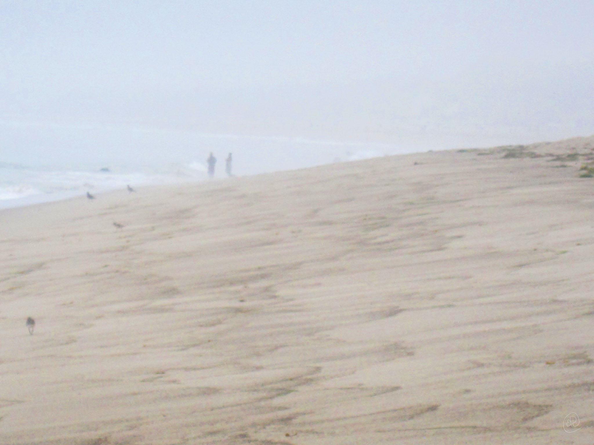 Hazy Beach WM.jpg