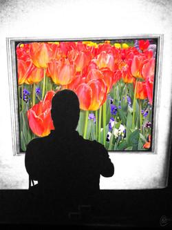 Tulip Selfie WM.jpg