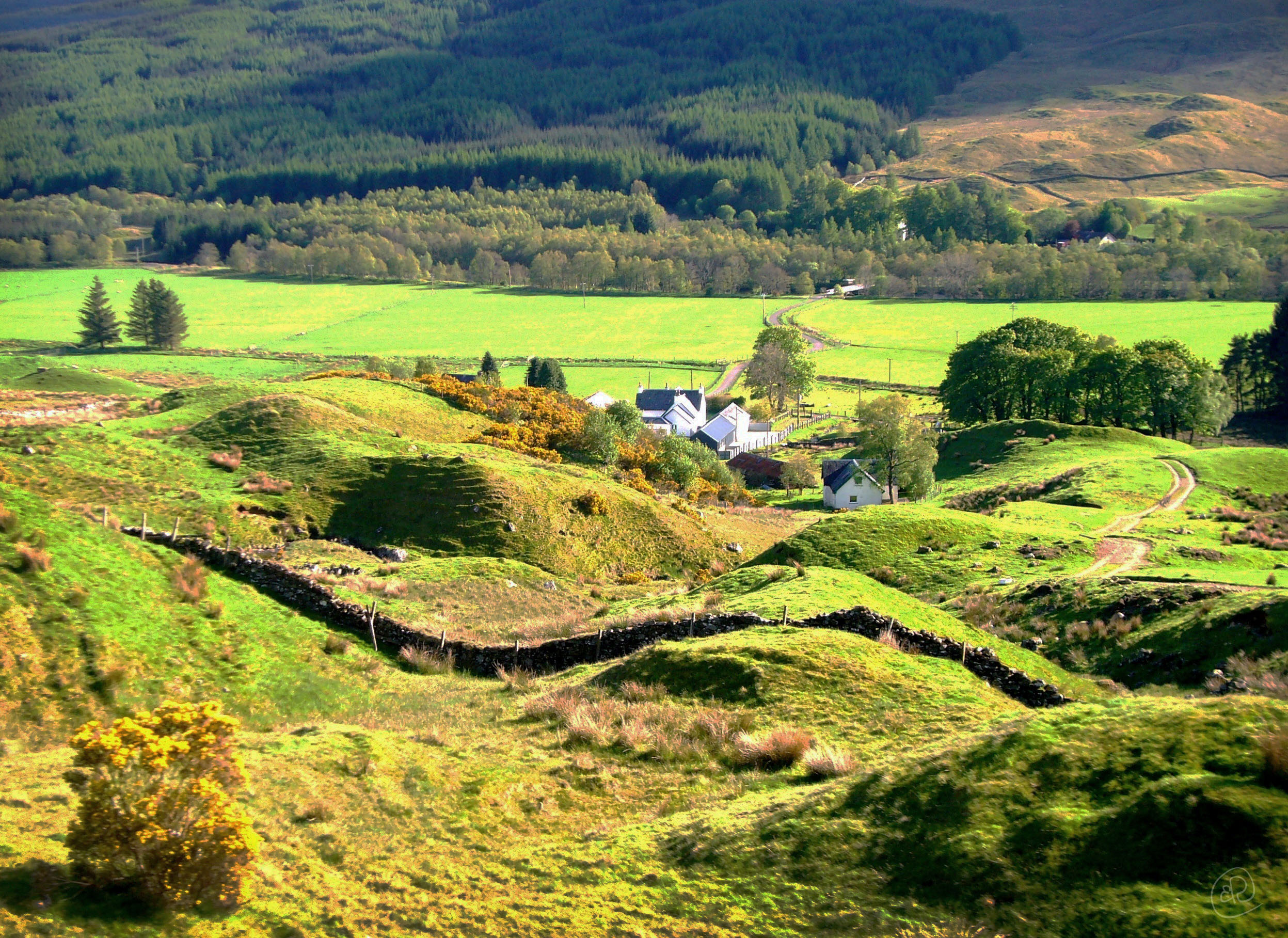 Scottish Countryside WM.jpg