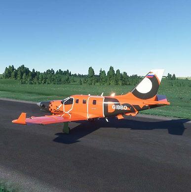 Dexter Air Taxi TBM 930 Livery