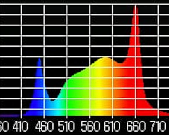Rosa-Rosette Spectrum Plot.png