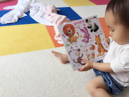 1歳の知育パズル