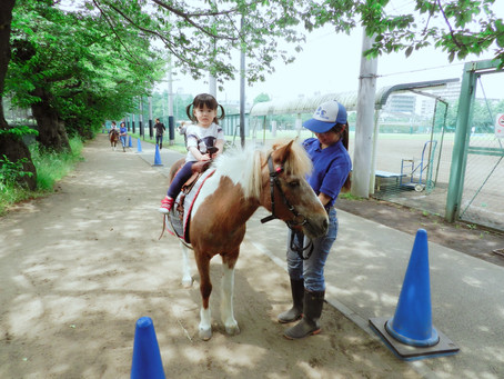 Pony体験&ふれあい広場