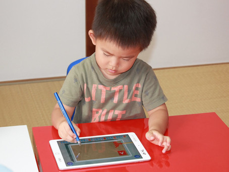 i pad & touch pen