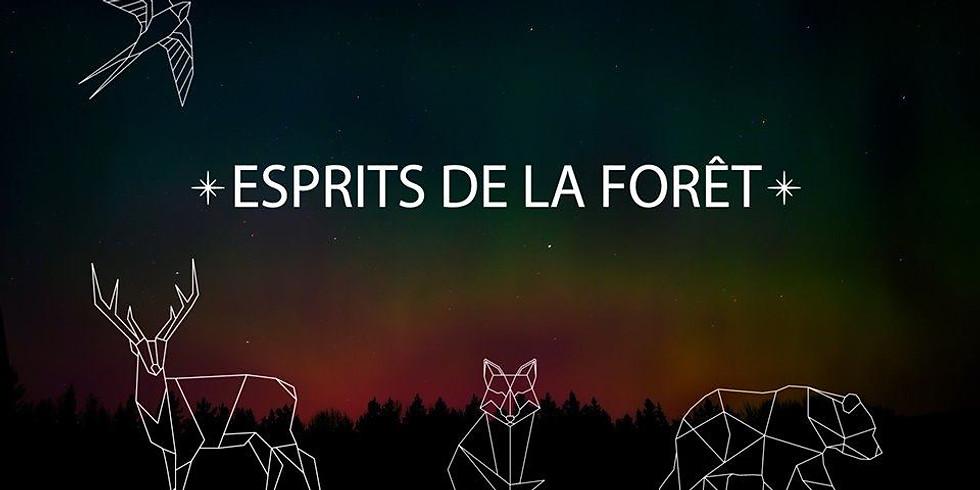 Création de costumes Esprit de la Forêt - Parade Phénoménale