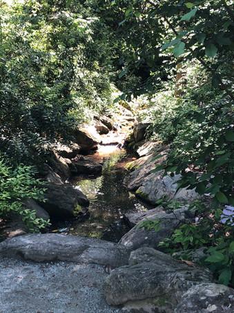 Duke Gardens.jpg
