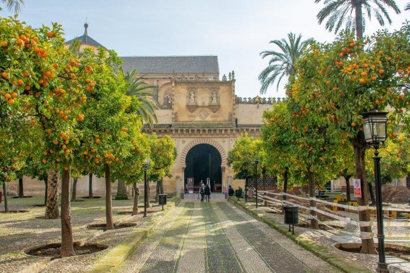 Mezquita Cordoba potujoči brlog