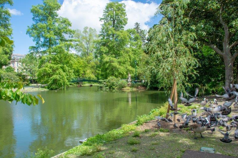 Jardin Public Bordeaux Potujoči brlog