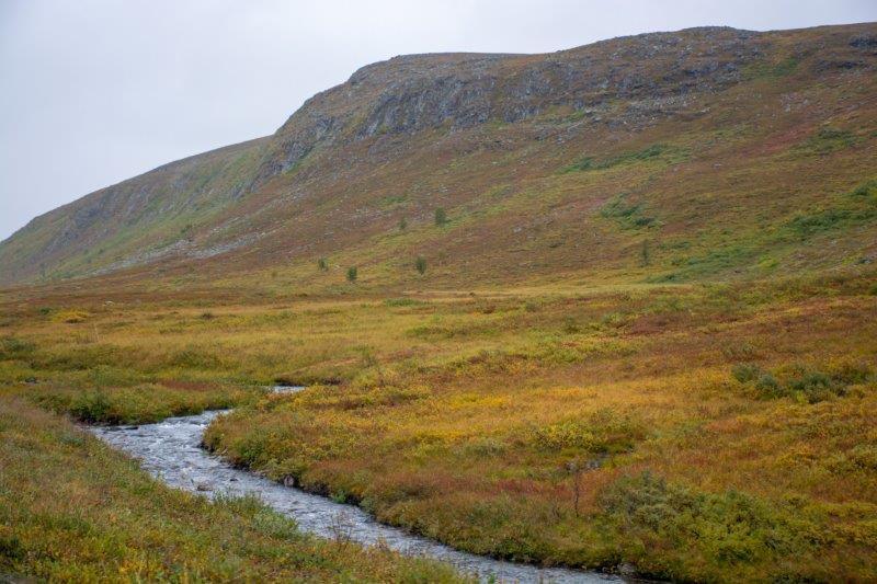 Tundra Potujoči brlog